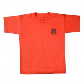 Camiseta Inf Bord Brasão Rs Cores (g-gg)
