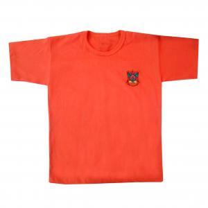 Camiseta Inf Bord Brasao Rs Cores (g-gg)